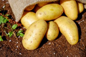 Is Potato Good for Health?
